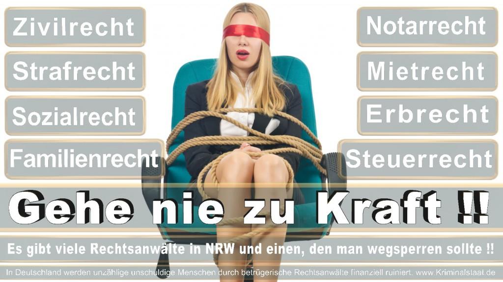Rechtsanwalt-Ulrich-Kraft (134)