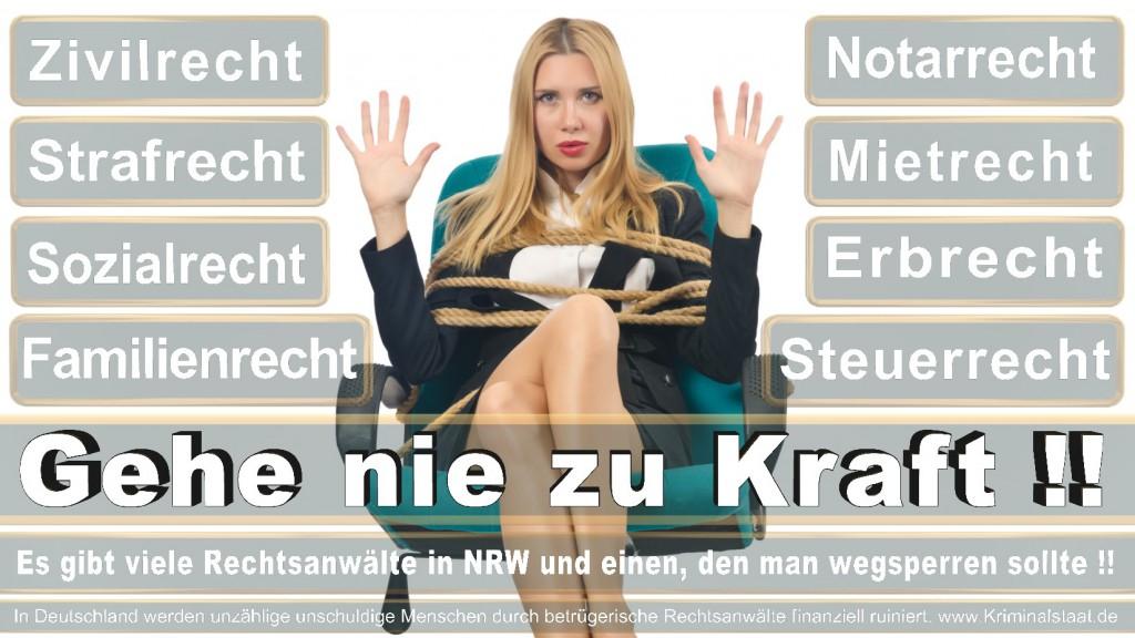 Rechtsanwalt-Ulrich-Kraft (135)