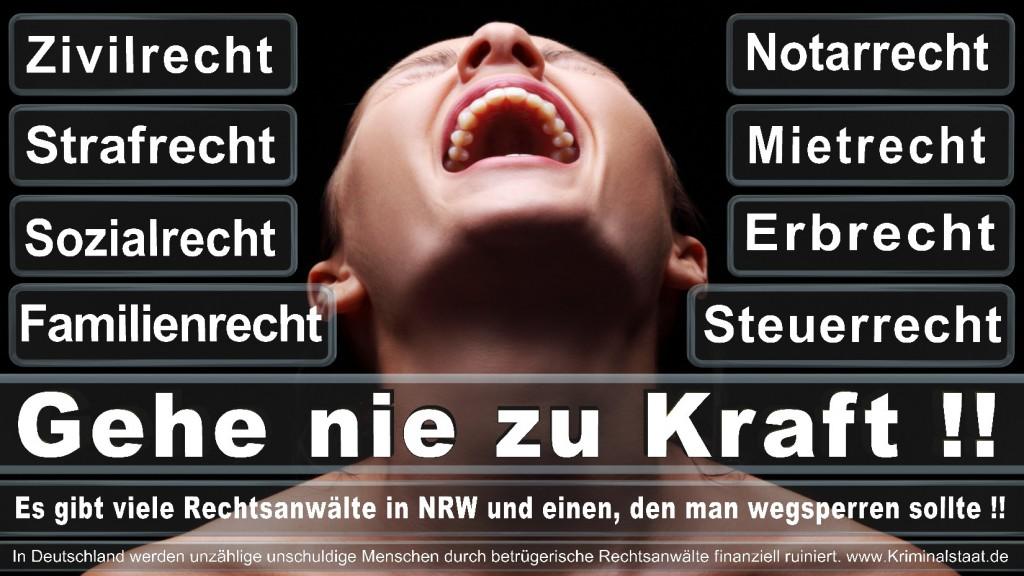 Rechtsanwalt-Ulrich-Kraft (149)