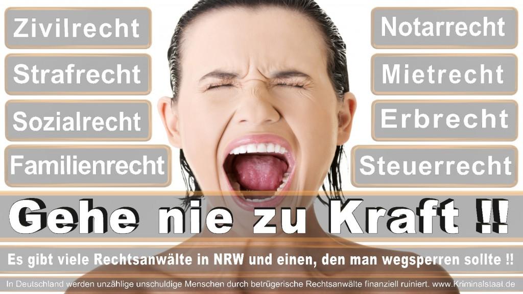 Rechtsanwalt-Ulrich-Kraft (154)
