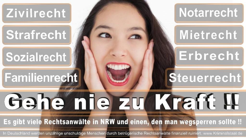 Rechtsanwalt-Ulrich-Kraft (173)