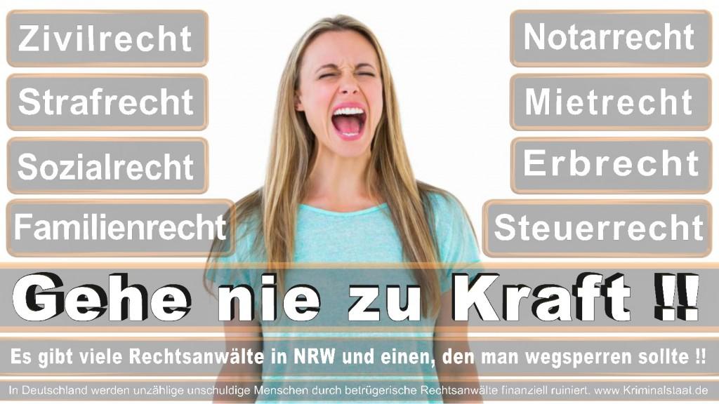 Rechtsanwalt-Ulrich-Kraft (178)