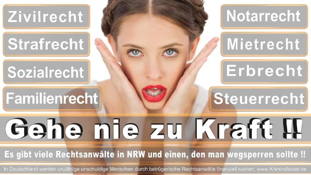 Rechtsanwalt-Ulrich-Kraft (230)
