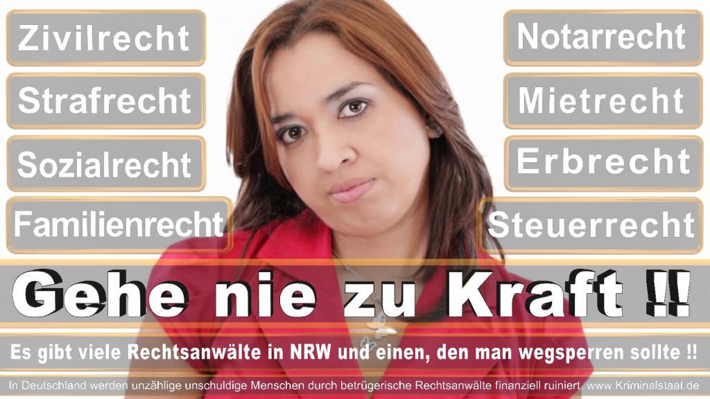 Rechtsanwalt-Ulrich-Kraft (233)