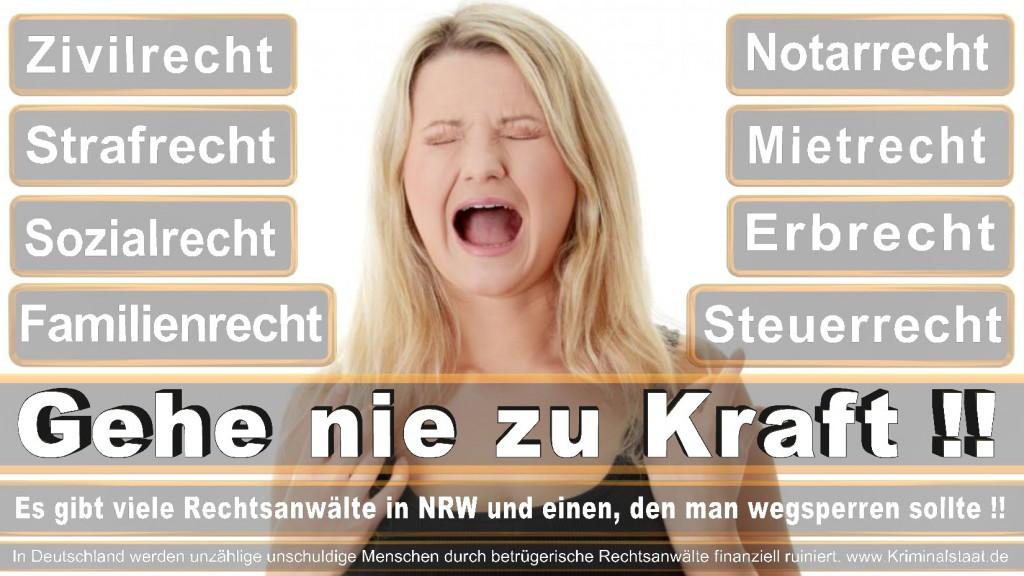 Rechtsanwalt-Ulrich-Kraft (238)