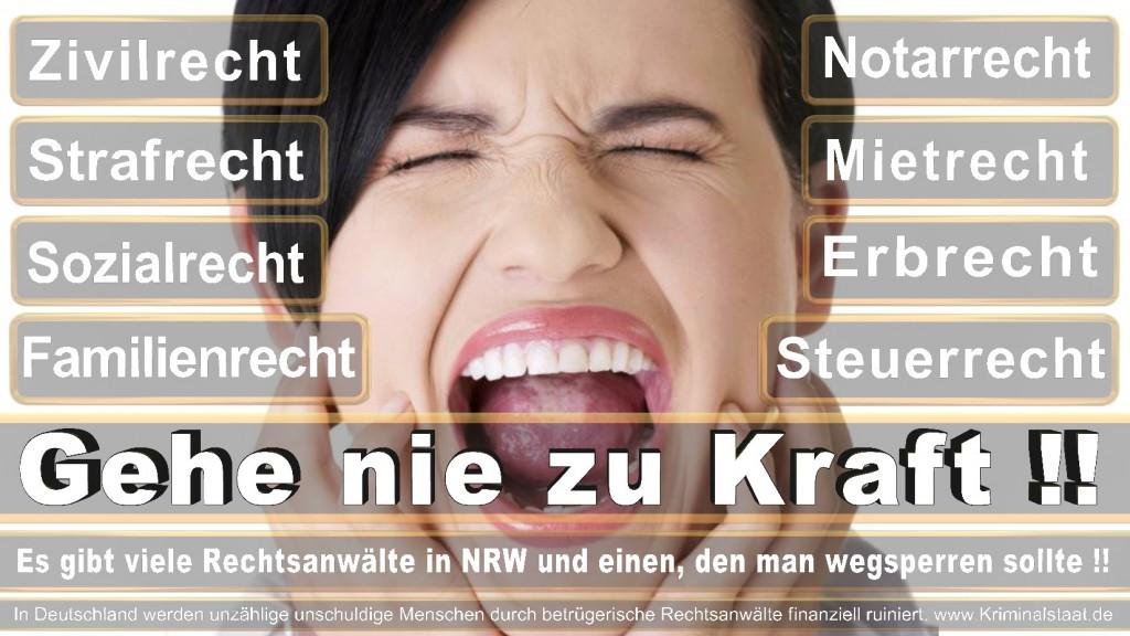 Rechtsanwalt-Ulrich-Kraft (248)