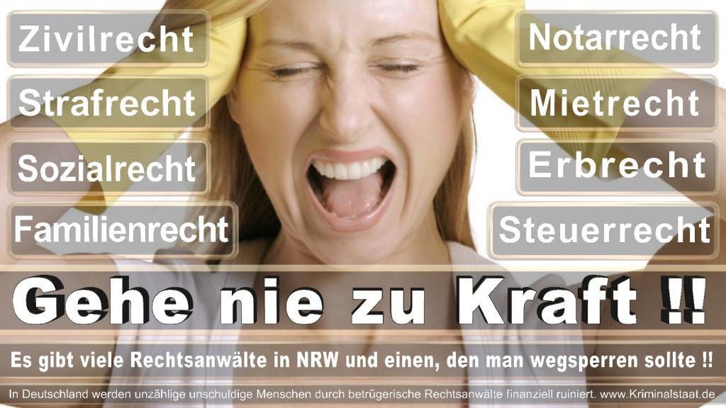Rechtsanwalt-Ulrich-Kraft (264)