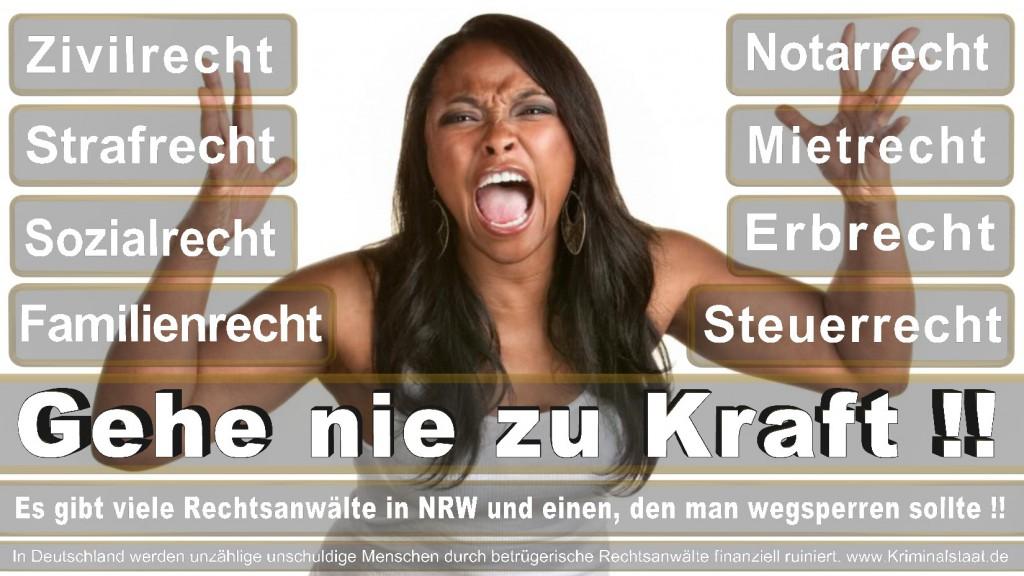 Rechtsanwalt-Ulrich-Kraft (272)