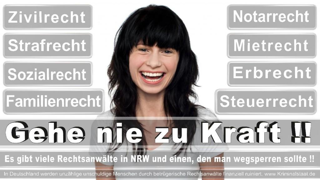 Rechtsanwalt-Ulrich-Kraft (276)