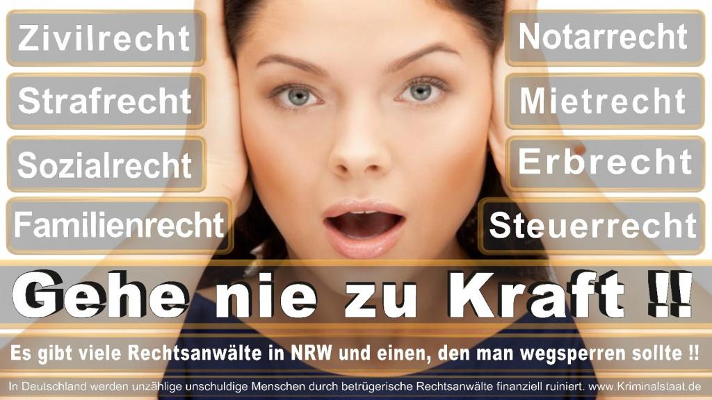 Rechtsanwalt-Ulrich-Kraft (285)