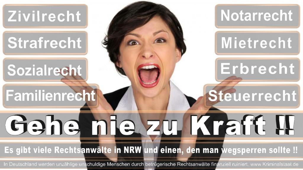 Rechtsanwalt-Ulrich-Kraft (295)