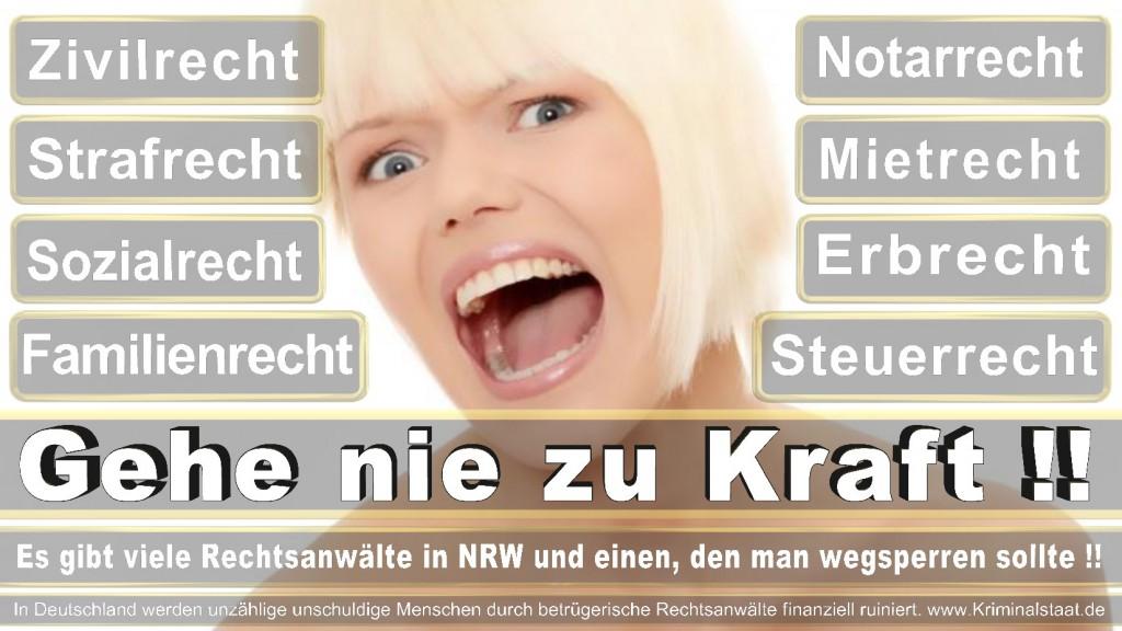 Rechtsanwalt-Ulrich-Kraft (312)