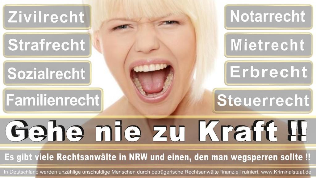 Rechtsanwalt-Ulrich-Kraft (313)