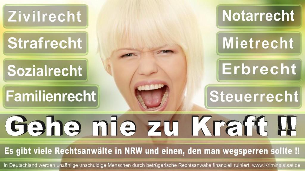 Rechtsanwalt-Ulrich-Kraft (315)