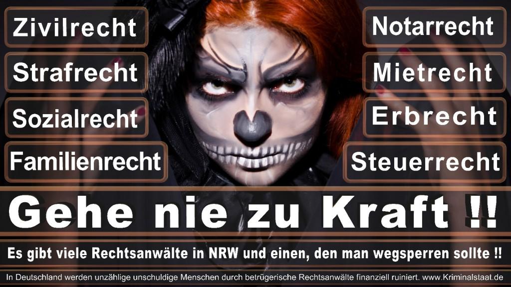 Rechtsanwalt-Ulrich-Kraft (344)