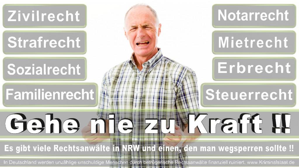Rechtsanwalt-Ulrich-Kraft (347)