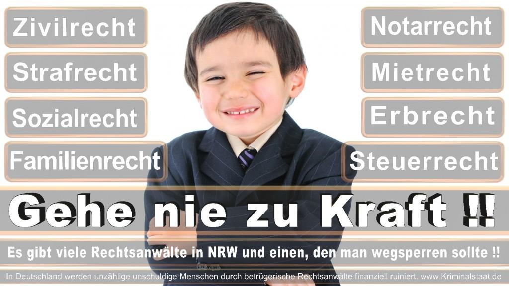 Rechtsanwalt-Ulrich-Kraft (348)