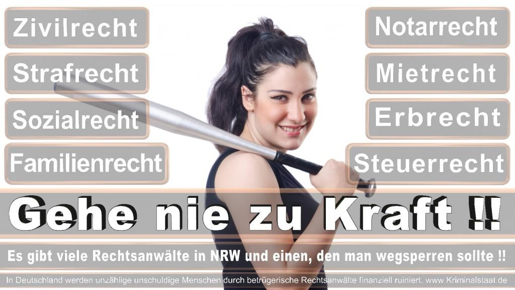 Rechtsanwalt-Ulrich-Kraft (374)