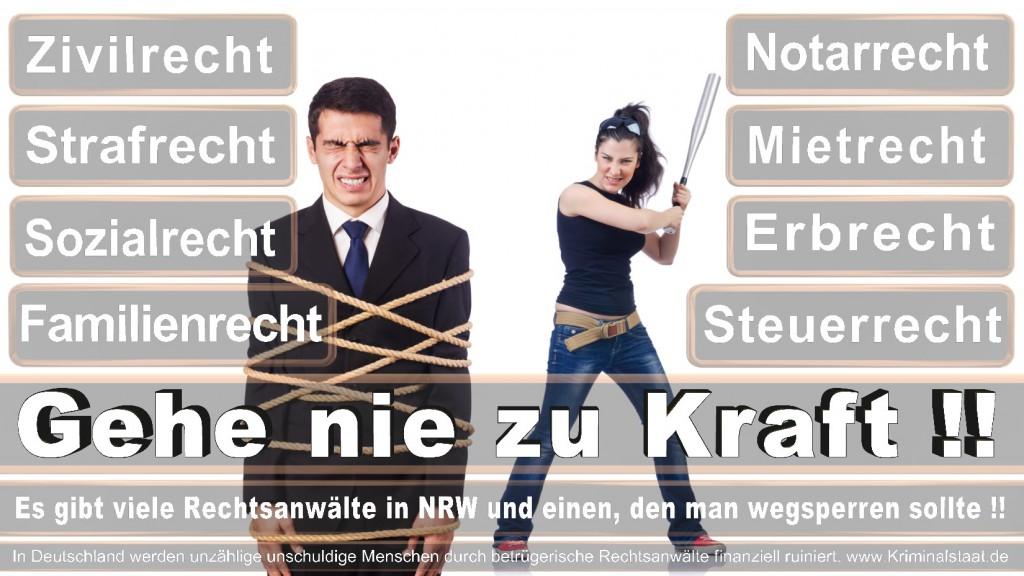 Rechtsanwalt-Ulrich-Kraft (376)