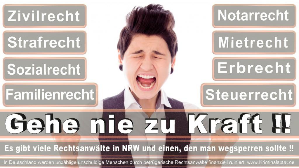 Rechtsanwalt-Ulrich-Kraft (399)