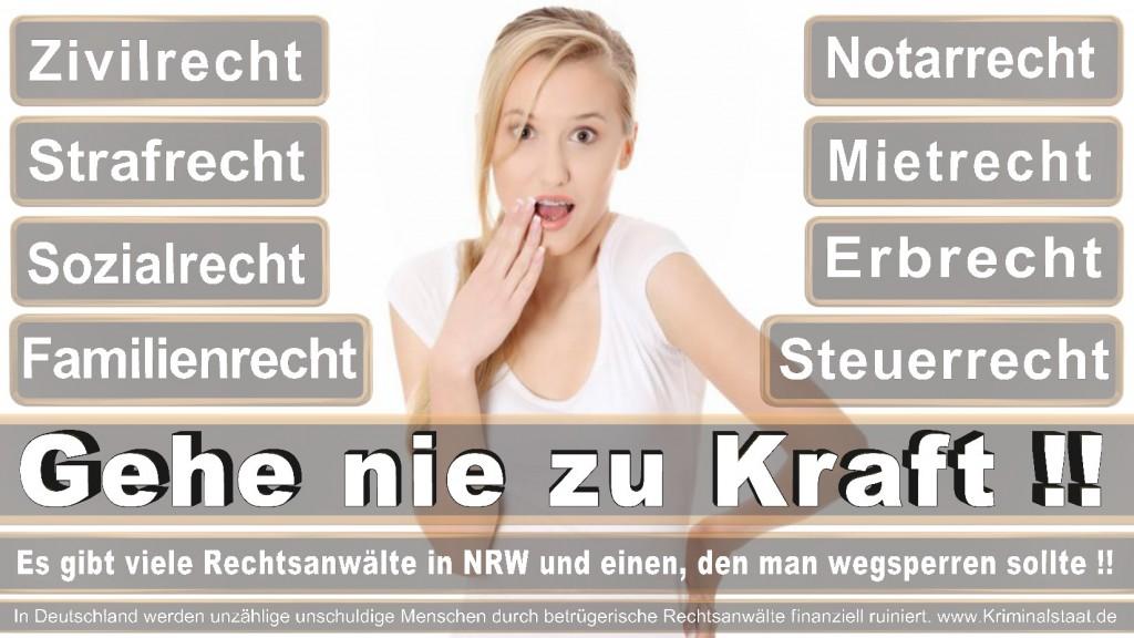 Rechtsanwalt-Ulrich-Kraft (41)