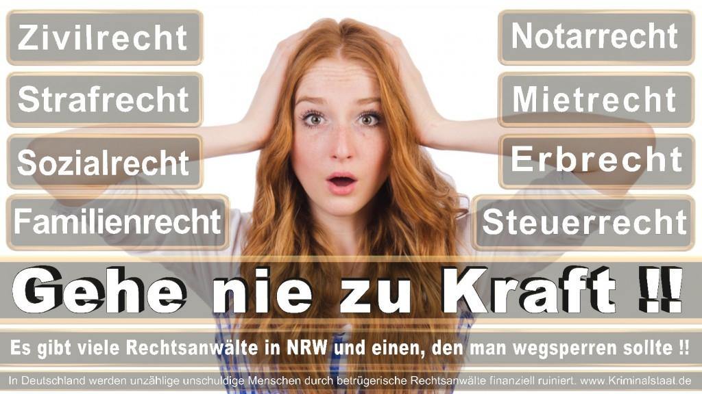 Rechtsanwalt-Ulrich-Kraft (411)