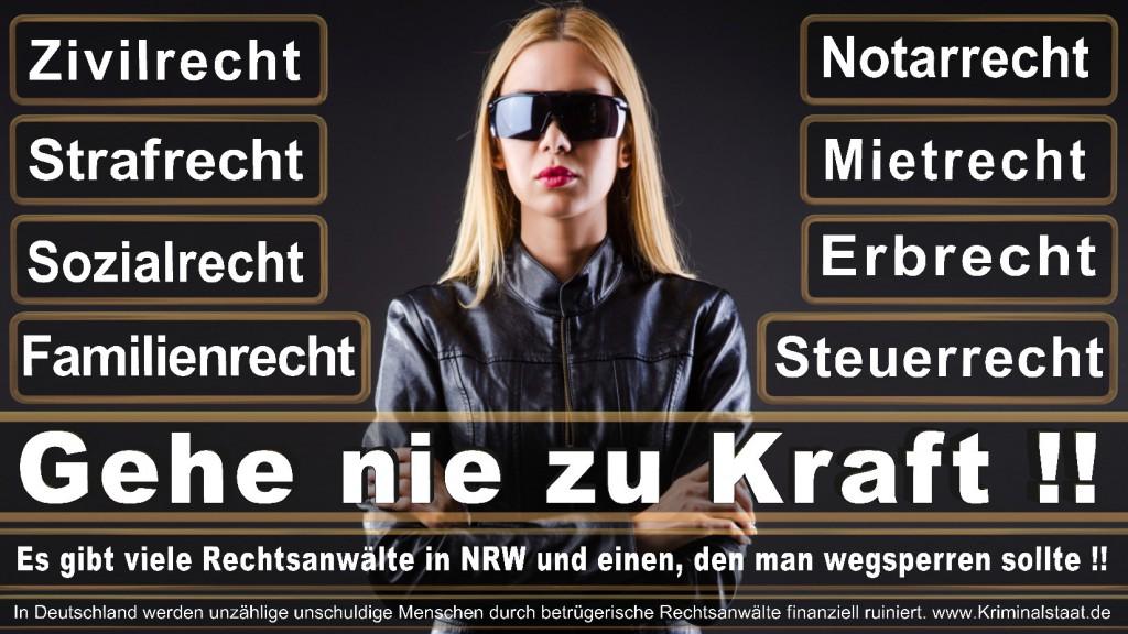 Rechtsanwalt-Ulrich-Kraft (419)