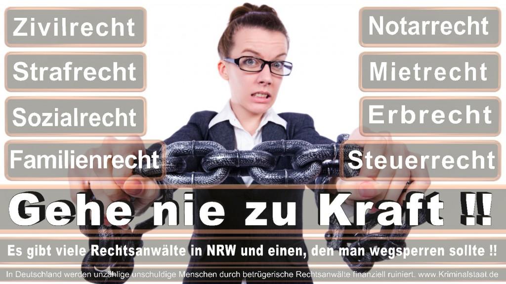 Rechtsanwalt-Ulrich-Kraft (424)