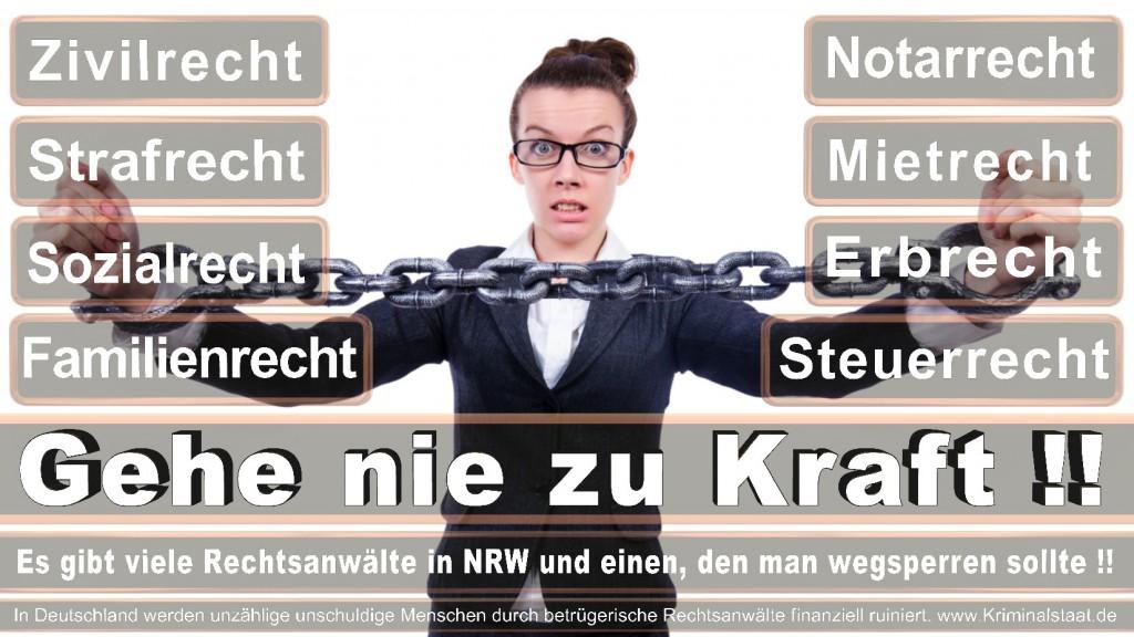Rechtsanwalt-Ulrich-Kraft (426)