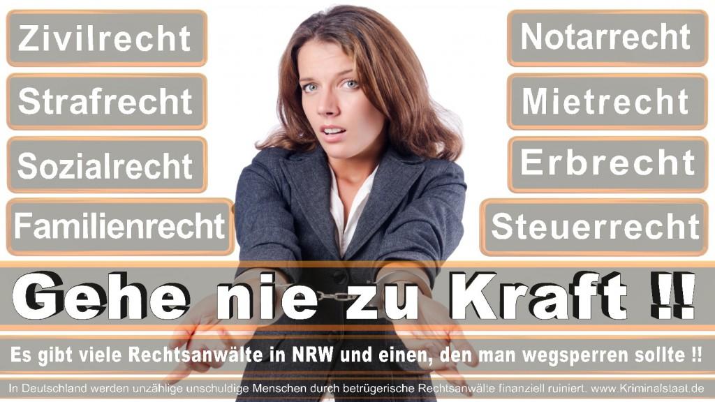 Rechtsanwalt-Ulrich-Kraft (431)