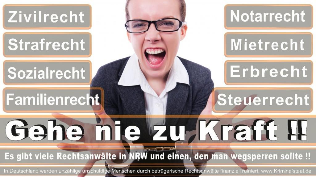 Rechtsanwalt-Ulrich-Kraft (432)