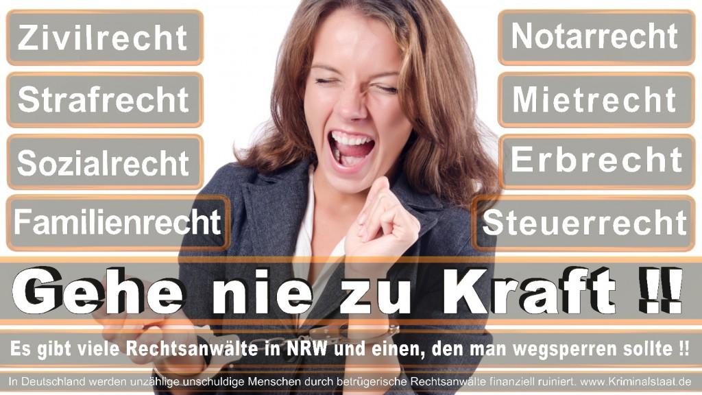 Rechtsanwalt-Ulrich-Kraft (433)