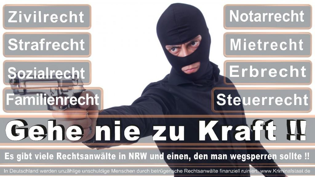 Rechtsanwalt-Ulrich-Kraft (438)