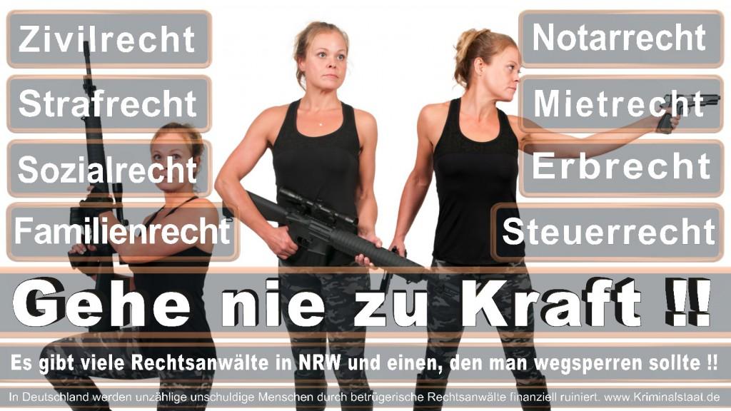 Rechtsanwalt-Ulrich-Kraft (440)