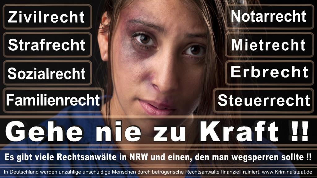 Rechtsanwalt-Ulrich-Kraft (480)