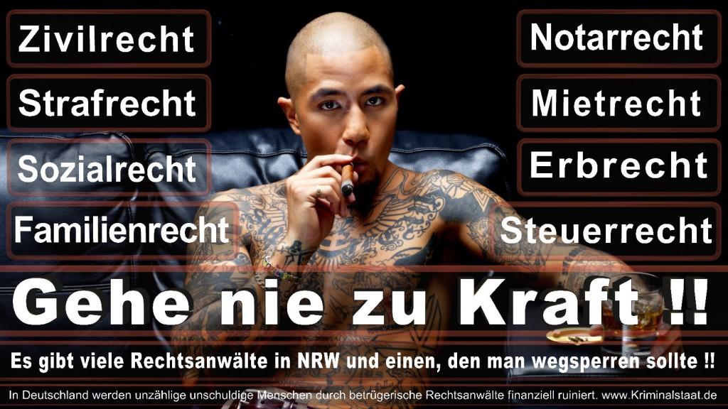 Rechtsanwalt-Ulrich-Kraft (491)