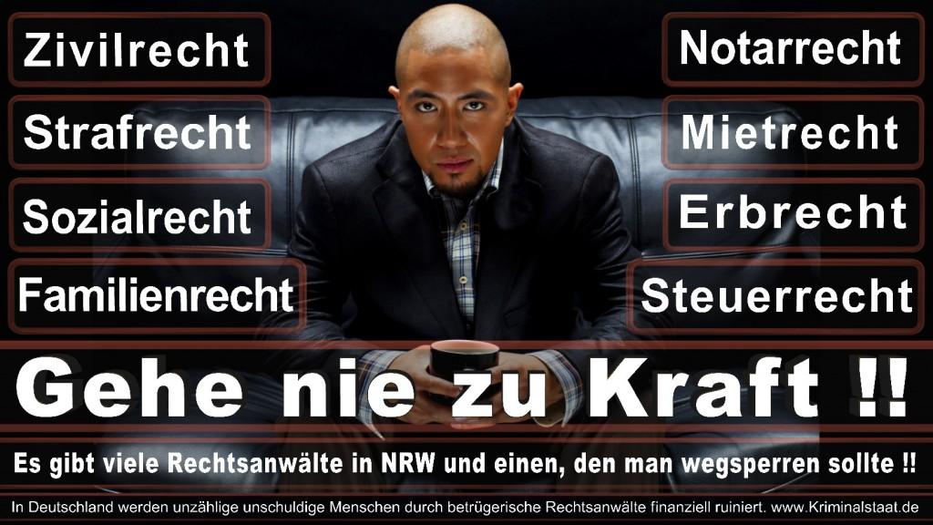 Rechtsanwalt-Ulrich-Kraft (492)