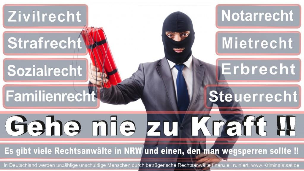 Rechtsanwalt-Ulrich-Kraft (494)