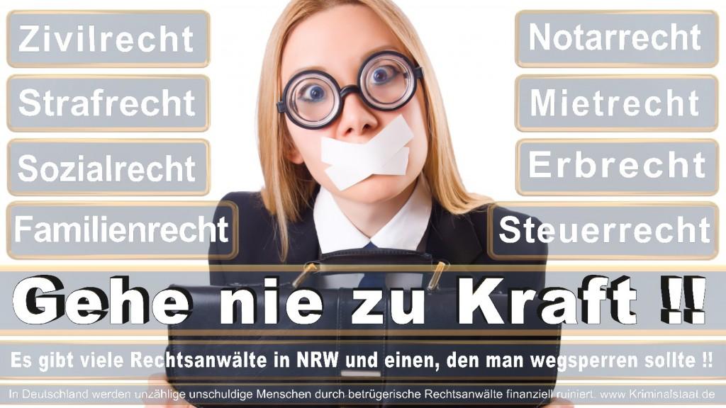 Rechtsanwalt-Ulrich-Kraft (504)