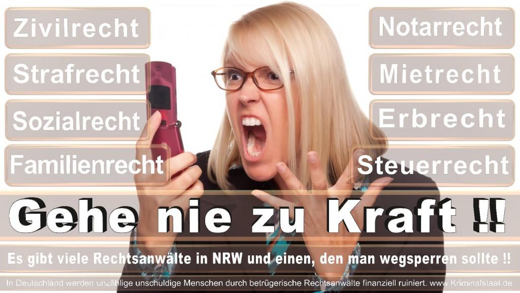 Rechtsanwalt-Ulrich-Kraft (511)