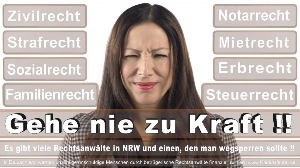 Rechtsanwalt-Ulrich-Kraft (517)