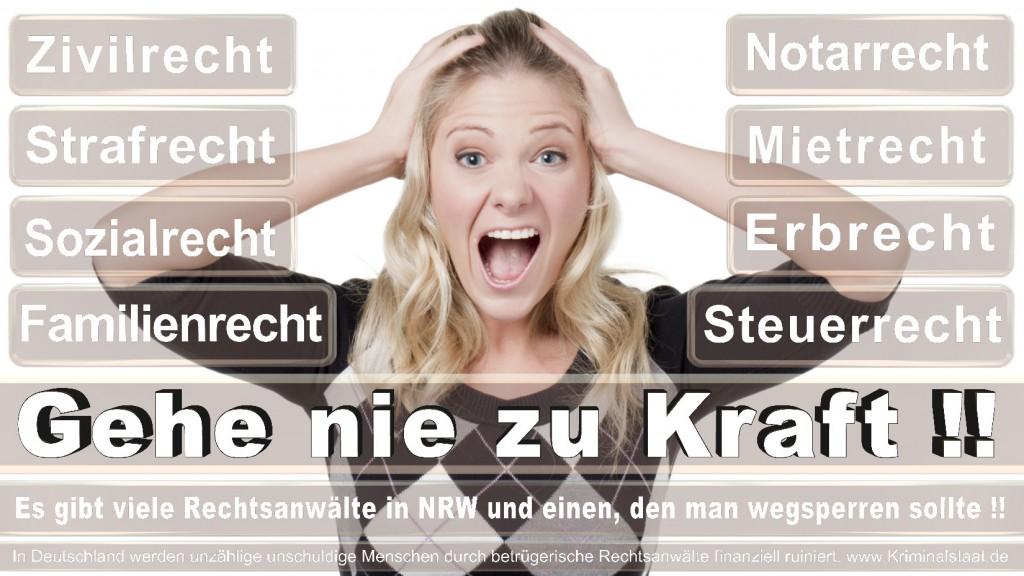 Rechtsanwalt-Ulrich-Kraft (518)