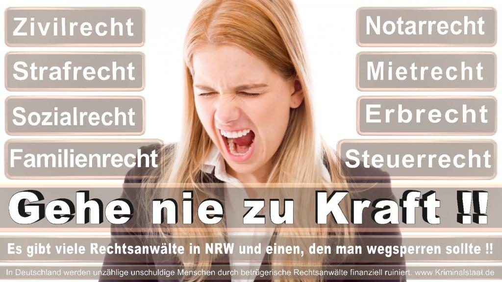 Rechtsanwalt-Ulrich-Kraft (538)