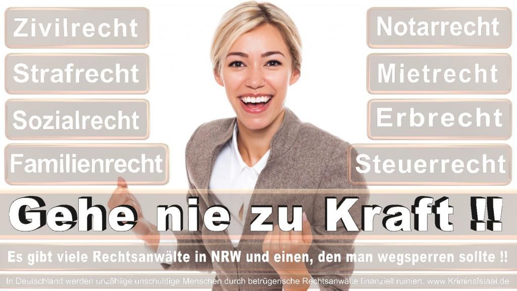 Rechtsanwalt-Ulrich-Kraft (544)
