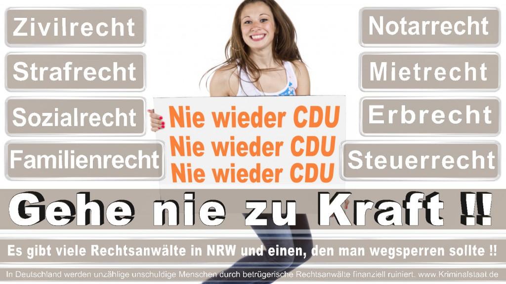 Rechtsanwalt-Ulrich-Kraft (559)