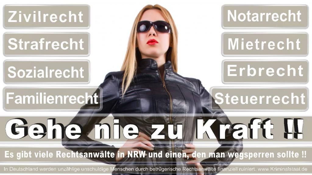 Rechtsanwalt-Ulrich-Kraft (576)