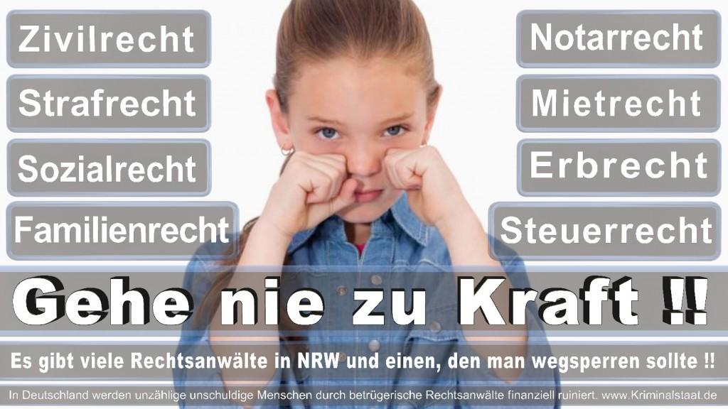 Rechtsanwalt-Ulrich-Kraft (8)
